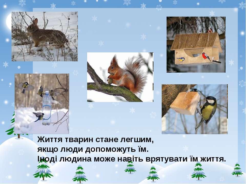 Життя тварин стане легшим, якщо люди допоможуть їм. Іноді людина може навіть ...