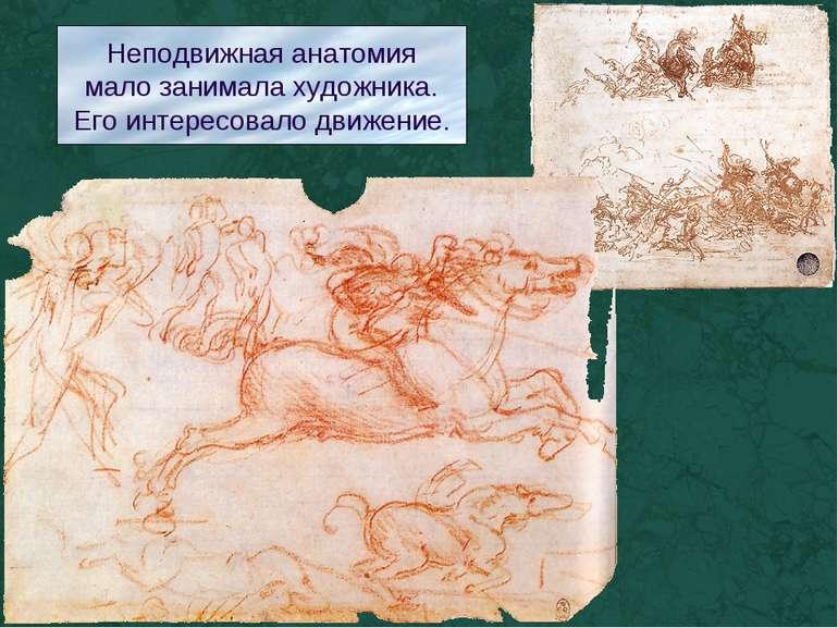 Неподвижная анатомия мало занимала художника. Его интересовало движение.