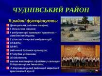 ЧУДНІВСЬКИЙ РАЙОН В районі функціонують: Центральна районна лікарня; 1 дільни...