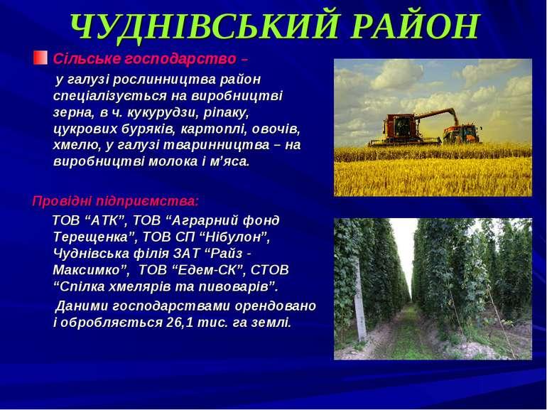 ЧУДНІВСЬКИЙ РАЙОН Сільське господарство – у галузі рослинництва район спеціал...