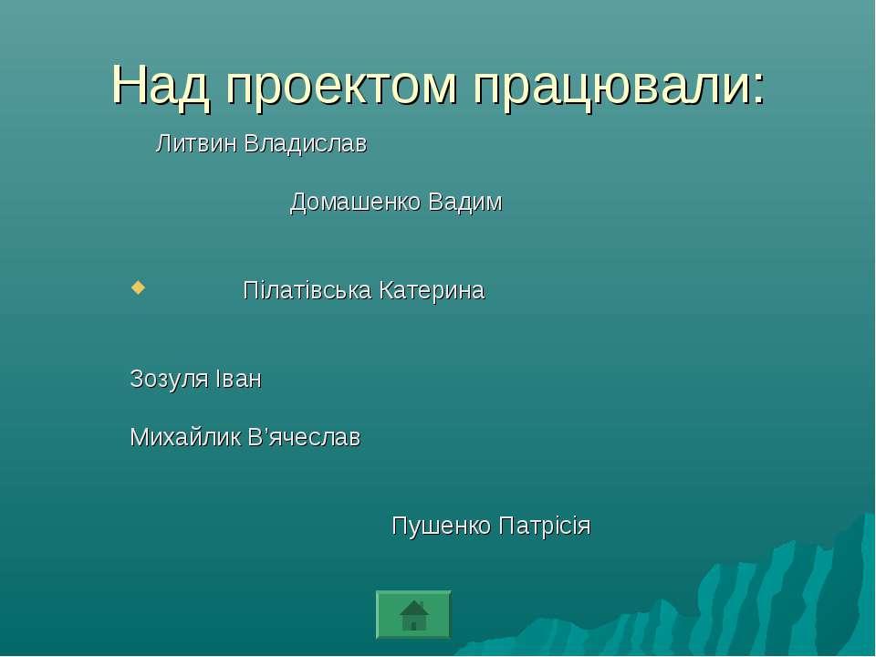 Над проектом працювали: Литвин Владислав Домашенко Вадим Пілатівська Катерина...