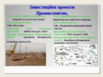 Інвестиційні проекти Промисловість Суть інвестиційного проекту - Видобуток гр...