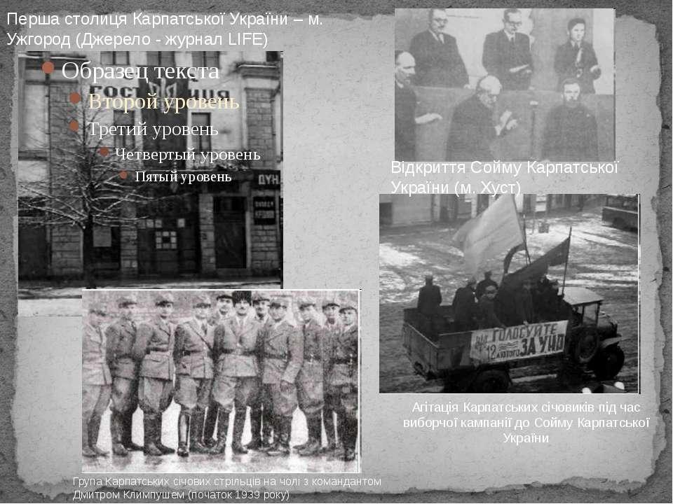 Агітація Карпатських січовиків під час виборчої кампанії до Сойму Карпатської...