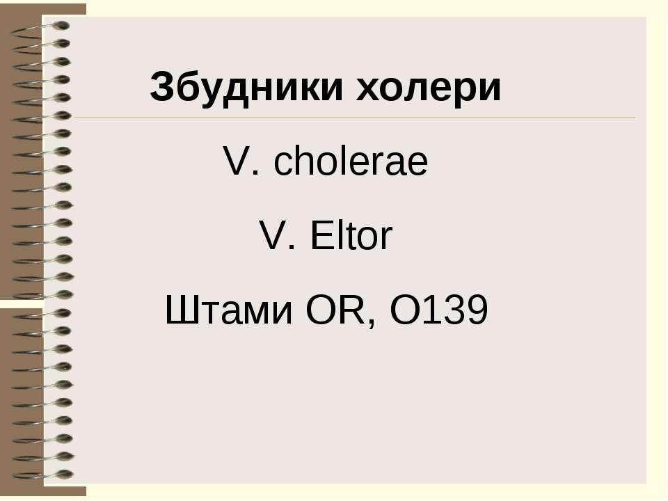 Збудники холери V. cholerae V. Eltor Штами OR, O139