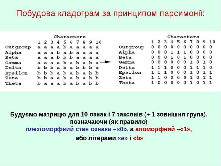 Побудова кладограм за принципом парсимонії: Будуємо матрицю для 10 ознак і 7 ...