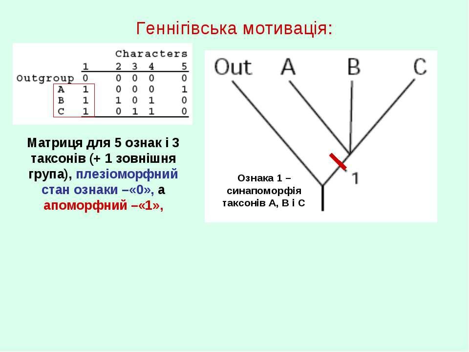 Геннігівська мотивація: Матриця для 5 ознак і 3 таксонів (+ 1 зовнішня група)...
