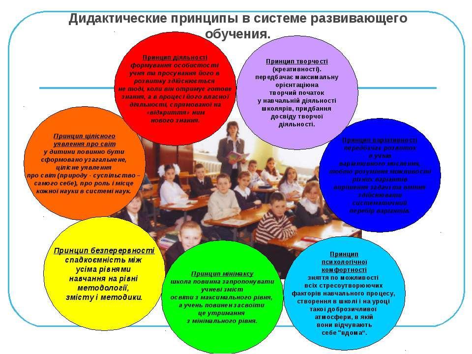 Дидактические принципы в системе развивающего обучения. Принцип цілісного уяв...