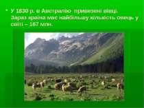 У 1830 р. в Австралію привезені вівці. Зараз країна має найбільшу кількість о...