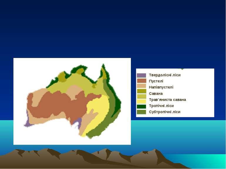 Твердолісні ліси Пустелі Напівпустелі Савана Трав'яниста савана Тропічні ліси...
