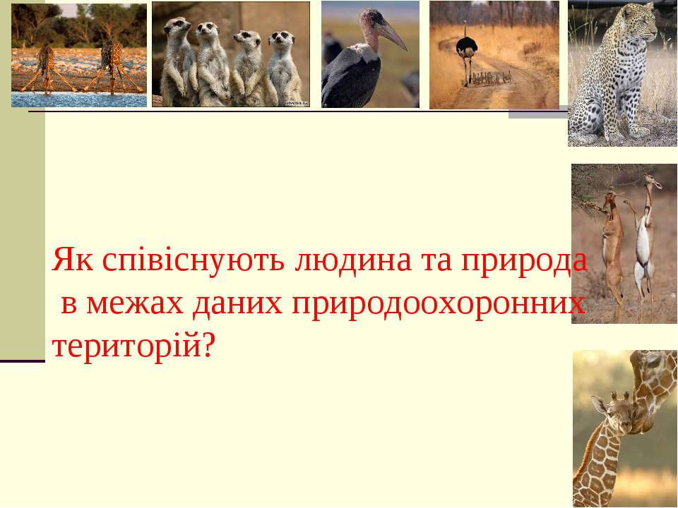 Як співіснують людина та природа в межах даних природоохоронних територій?