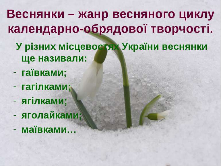 Веснянки – жанр весняного циклу календарно-обрядової творчості. У різних місц...