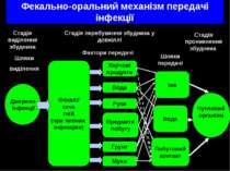 Фекально-оральний механізм передачі інфекції Джерело інфекції Фекалії сеча гн...