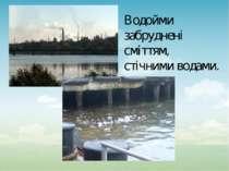 Водойми забруднені сміттям, стічними водами.
