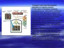 Усередині реактора безперервно відбувається ядерна реакція. Атоми урану в пал...