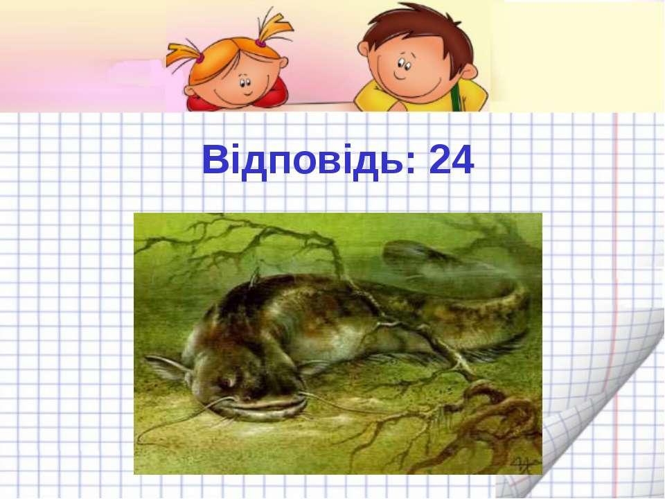Відповідь: 24