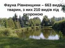 Фауна Рівненщини – 663 види тварин, з них 210 видів під охороною