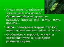 Розділ зоології, який вивчає земноводних, називається батрахологією (від грец...