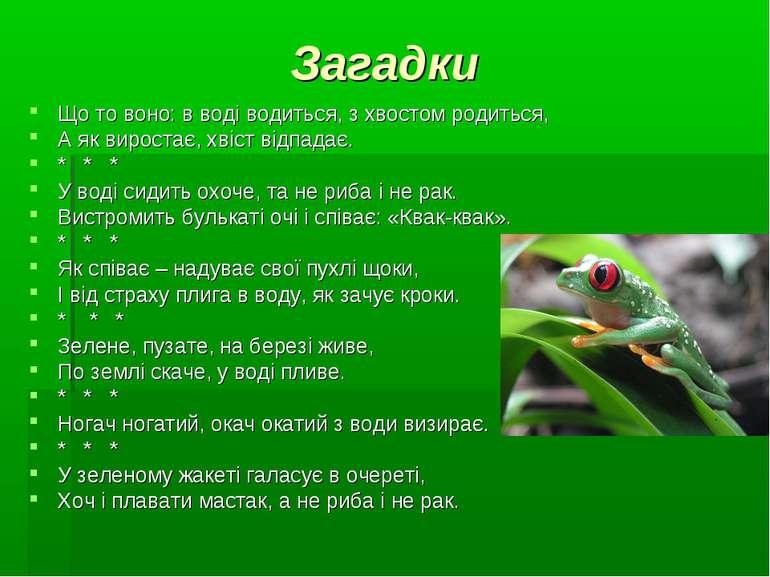 Загадки Що то воно: в воді водиться, з хвостом родиться, А як виростає, хвіст...