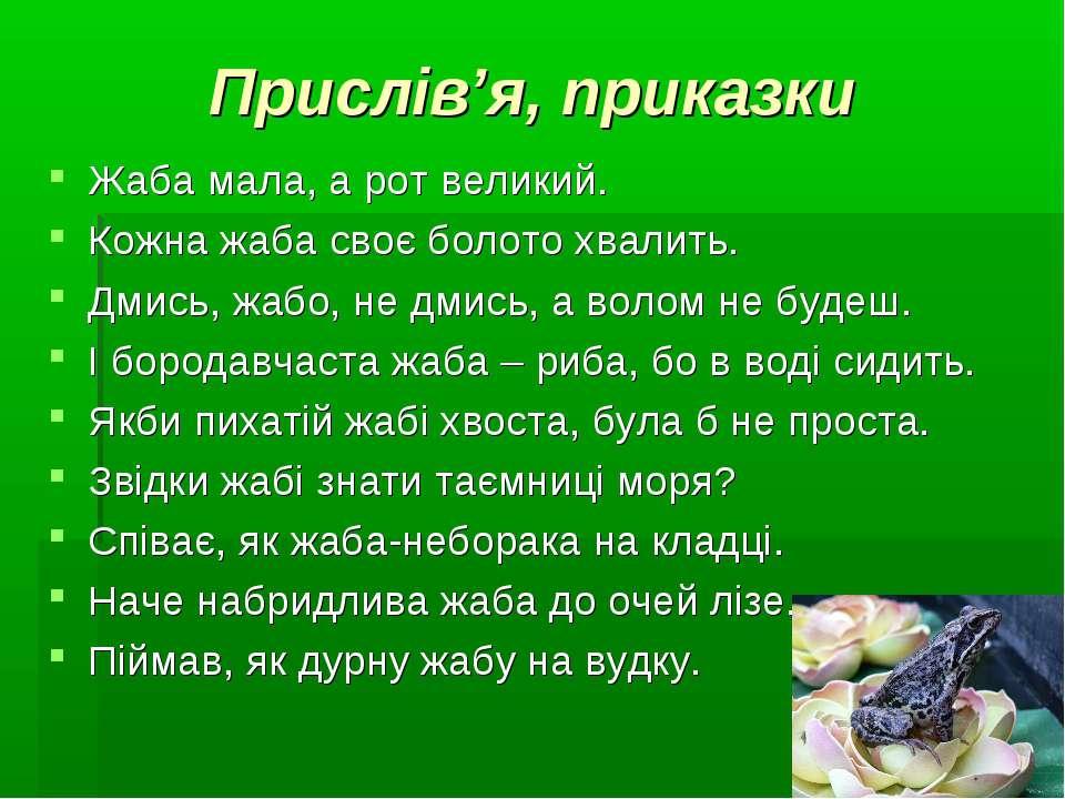 Прислів'я, приказки Жаба мала, а рот великий. Кожна жаба своє болото хвалить....