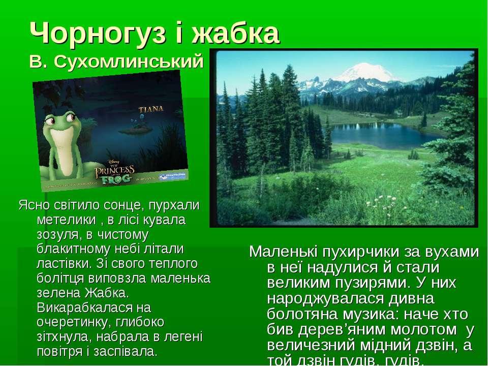 Чорногуз і жабка В. Сухомлинський Ясно світило сонце, пурхали метелики , в лі...