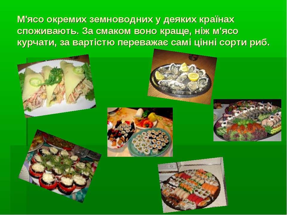 М'ясо окремих земноводних у деяких країнах споживають. За смаком воно краще, ...