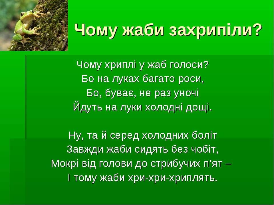 Чому жаби захрипіли? Чому хриплі у жаб голоси? Бо на луках багато роси, Бо, б...