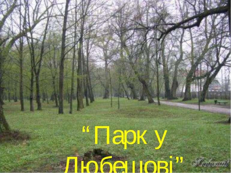 """""""Парк у Любешові"""""""