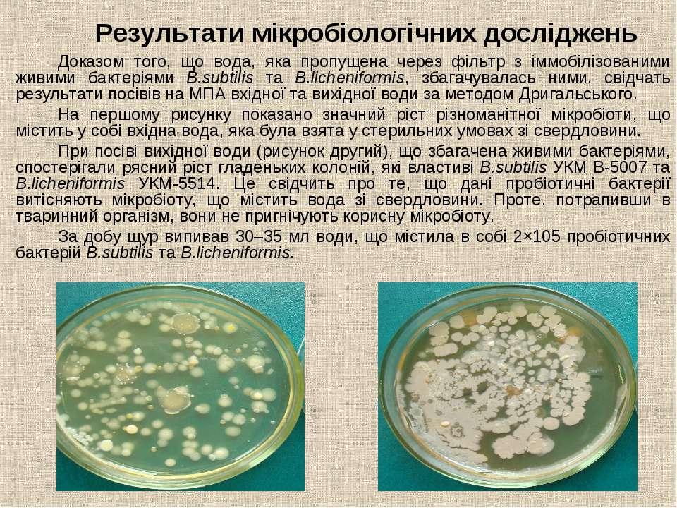 Результати мікробіологічних досліджень Доказом того, що вода, яка пропущена ч...