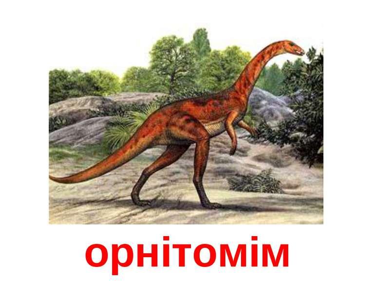 орнітомім