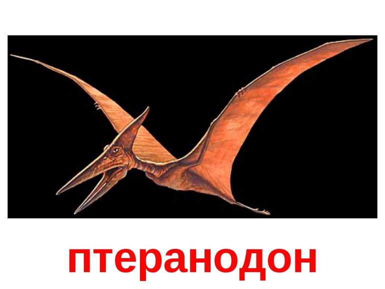 птеранодон