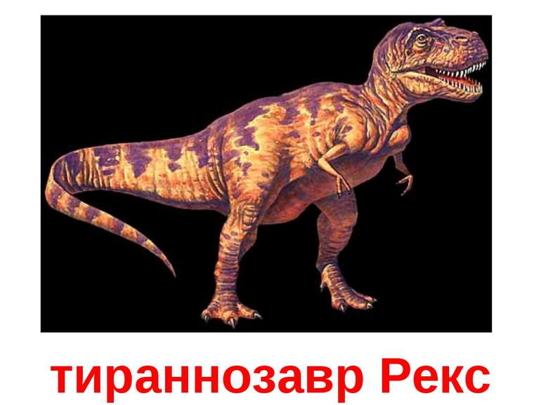 тираннозавр Рекс