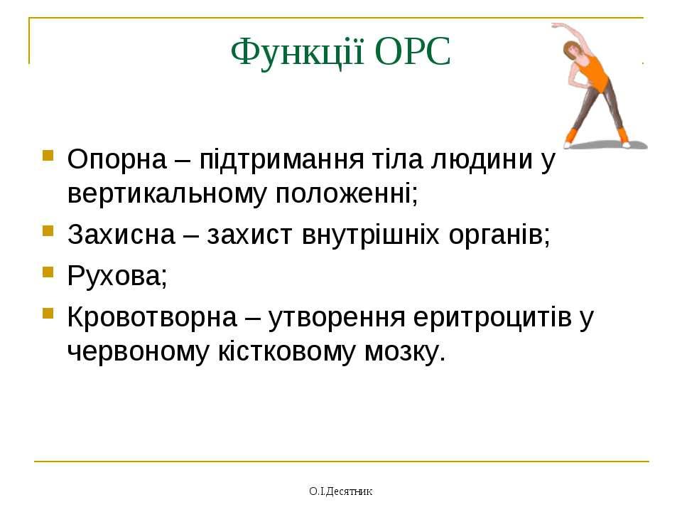 Функції ОРС Опорна – підтримання тіла людини у вертикальному положенні; Захис...