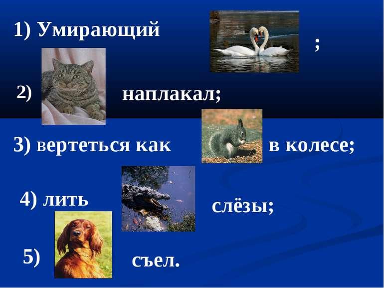 1) Умирающий ; 3) вертеться как в колесе; 2) наплакал; 4) лить слёзы; 5) съел.