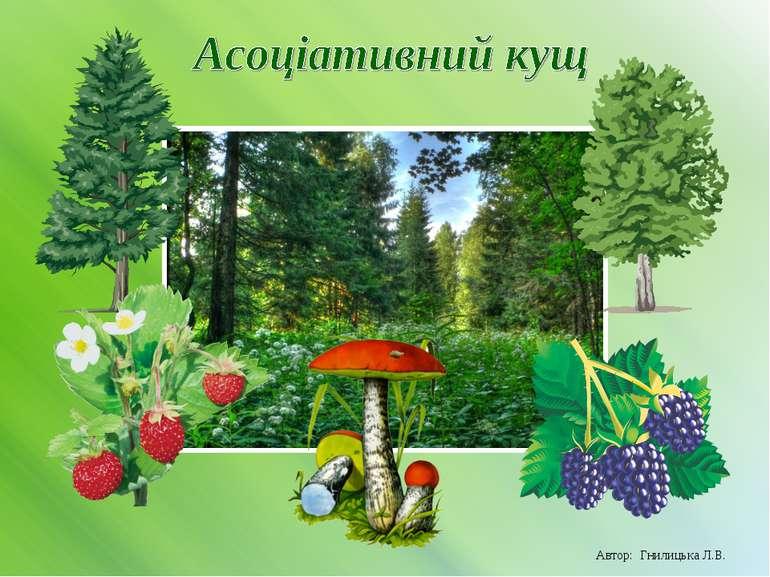 Автор: Гнилицька Л.В.