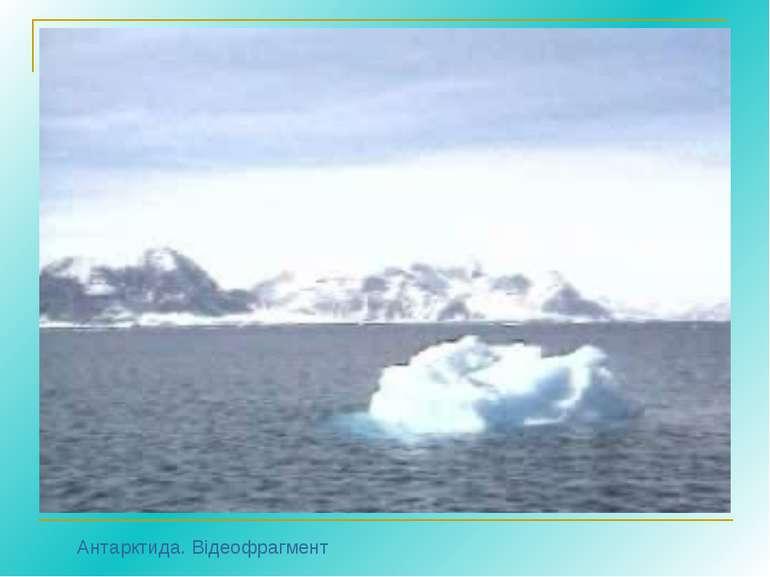 Антарктида. Відеофрагмент
