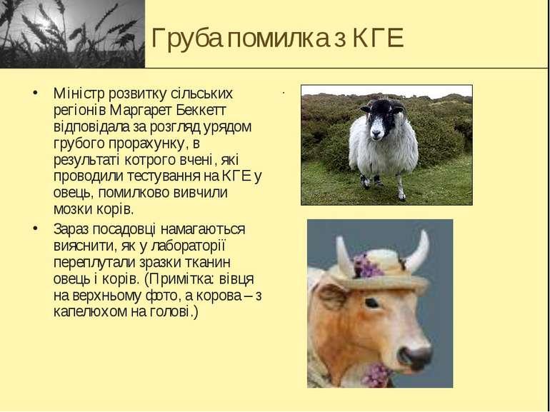Груба помилка з КГЕ Міністр розвитку сільських регіонів Маргарет Беккетт відп...
