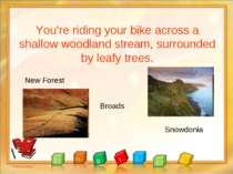 You're riding your bike across a shallow woodland stream, surrounded by leafy...