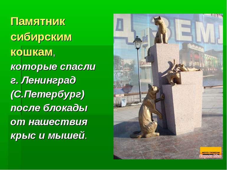 Памятник сибирским кошкам, которые спасли г. Ленинград (С.Петербург) после бл...