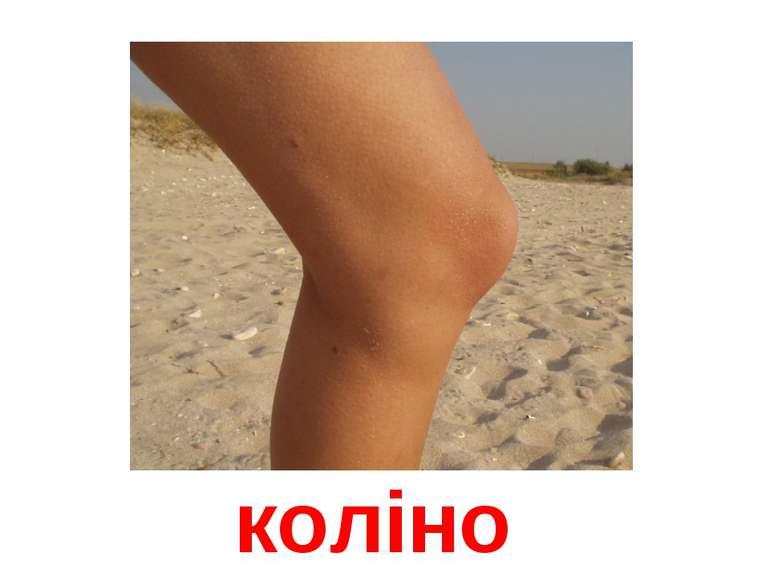 коліно