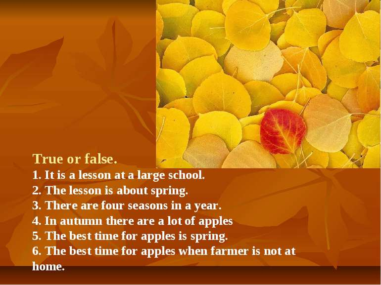 True or false. 1. It is a lesson at a large school. 2. The lesson is about sp...