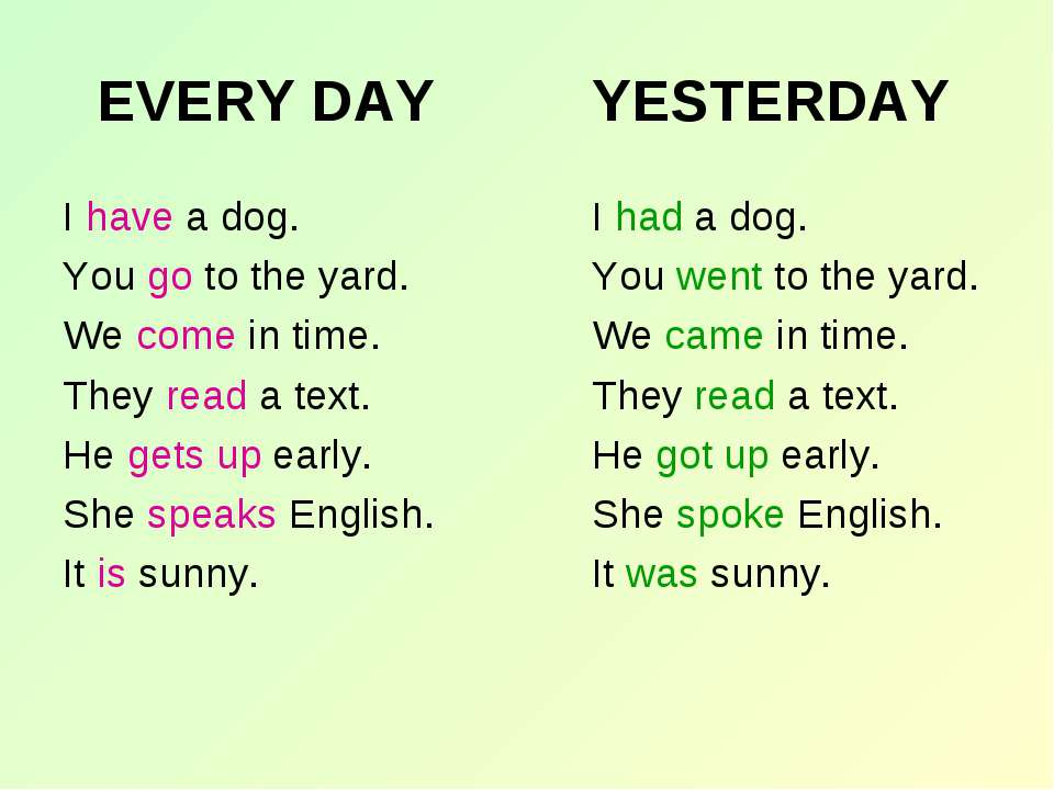 EVERY DAY I have a dog. You go to the yard. We come in time. They read a text...