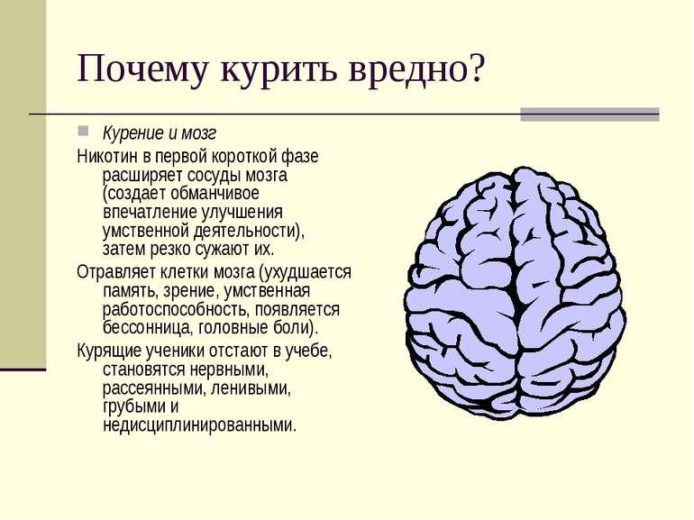 Почему курить вредно? Курение и мозг Никотин в первой короткой фазе расширяет...