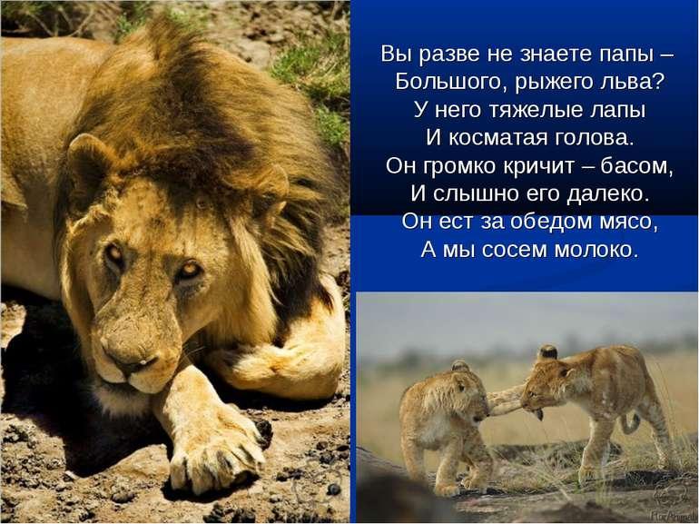 Вы разве не знаете папы – Большого, рыжего льва? У него тяжелые лапы И космат...