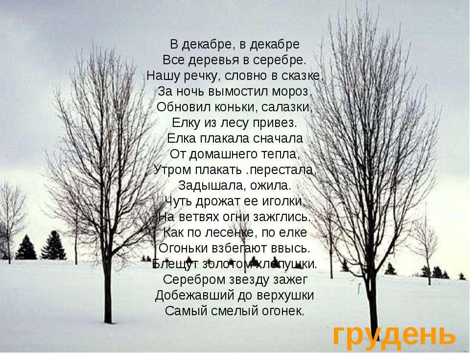 грудень В декабре, в декабре Все деревья в серебре. Нашу речку, словно в сказ...