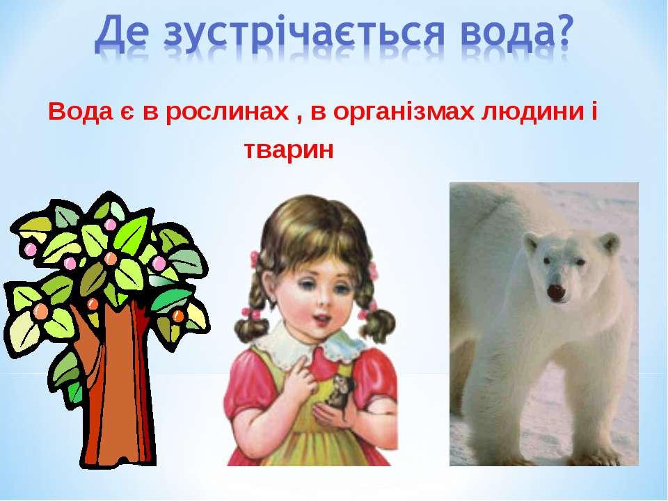 Вода є в рослинах , в організмах людини і тварин