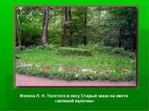 Могила Л. Н. Толстого в лесу Старый заказ на месте «зеленой палочки»