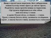 Якщо в ґрунті мало перегною, його забарвлення змінюється від темно-сірого до ...