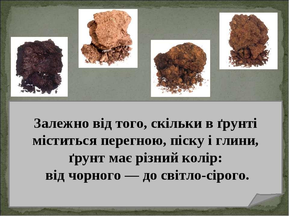 Залежно від того, скільки в ґрунті міститься перегною, піску і глини, ґрунт м...