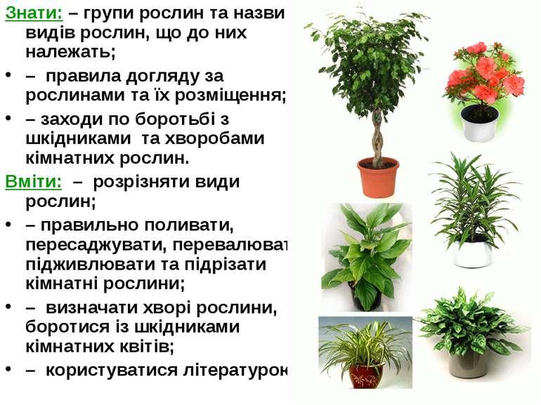 Знати: – групи рослин та назви видів рослин, що до них належать; – правила до...