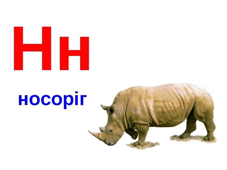 Нн носоріг
